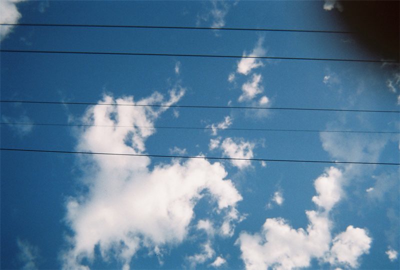 Disposable Camera Project: First Edition. Image by Olivia Jensen